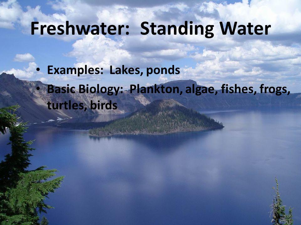 Aquatic Ecosystems.