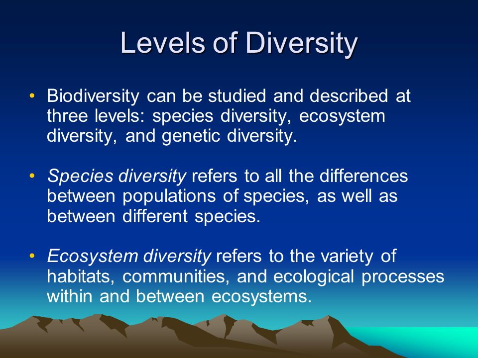 community structure habitat and niche Community assembly, determinants of plant community diversity and structure, habitat filtering, intraspecific trait variability, limiting similarity, niche occupancy, species richness 1 | introduction.