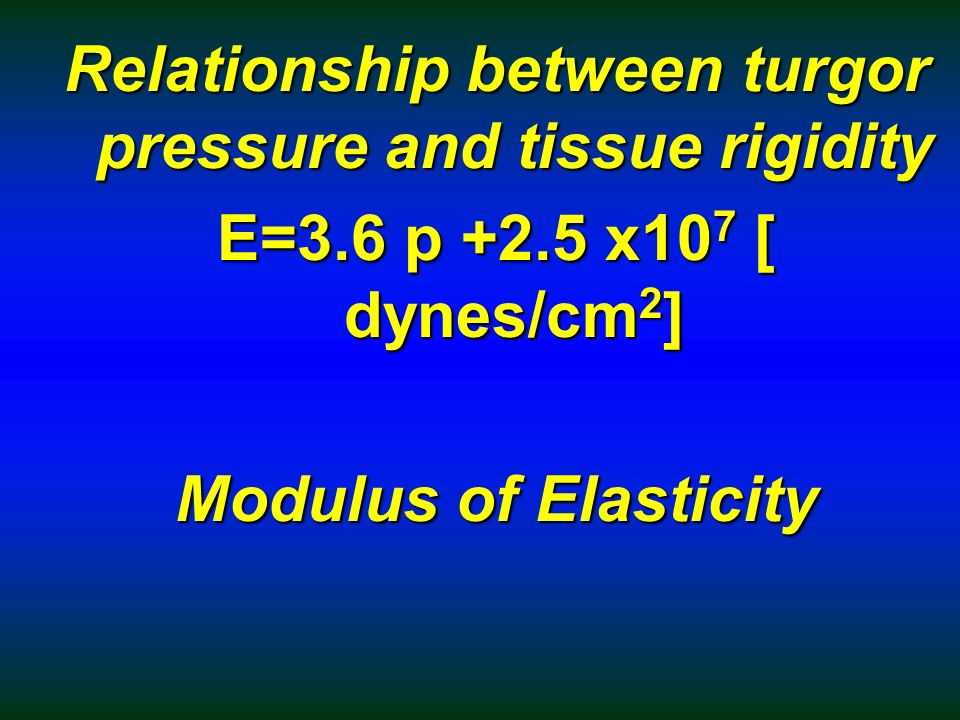 what is the relationship between plasmolysis and turgor pressure