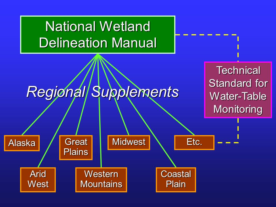Regional Supplements National Wetland Delineation Manual