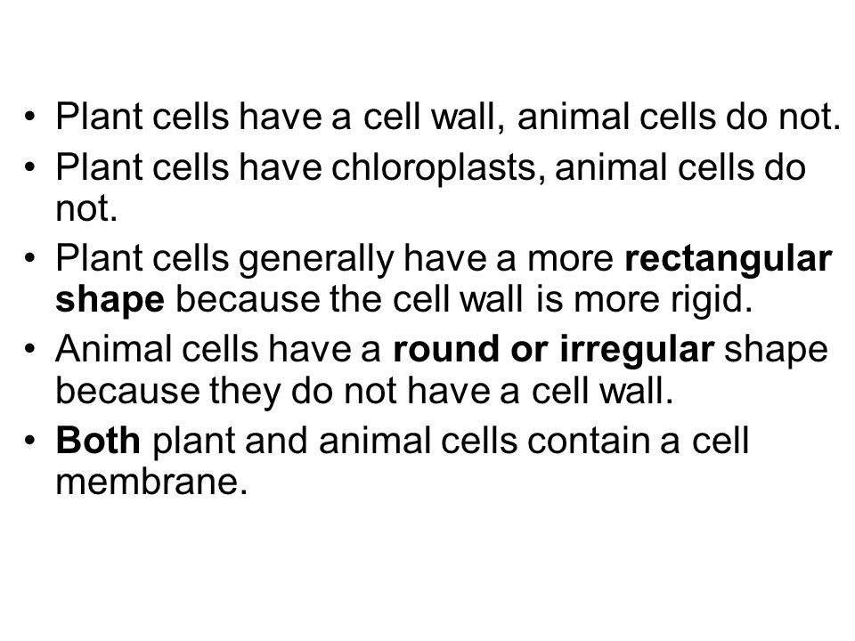 animal cells do not have a What cell parts do plant cells have and animal cells do not plants cell have cell wall composed of as for animal cell they do not have vacuole.