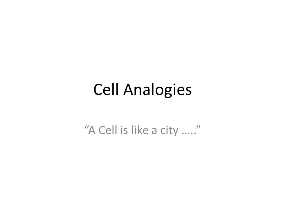 Cell Analogies A Cell Is Like A City Ppt Video Online Download
