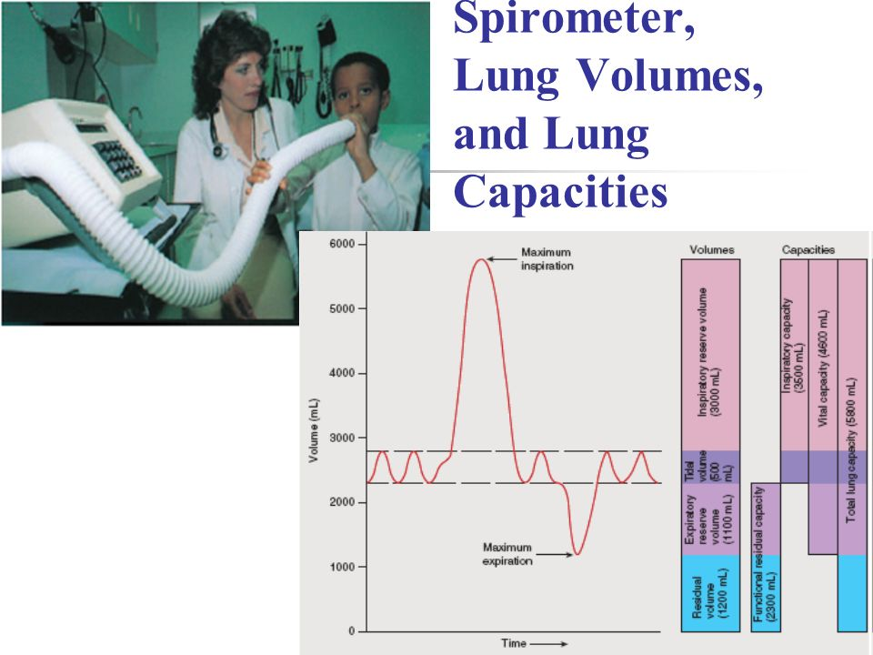 Spirometer, Lung Volumes, and Lung Capacities