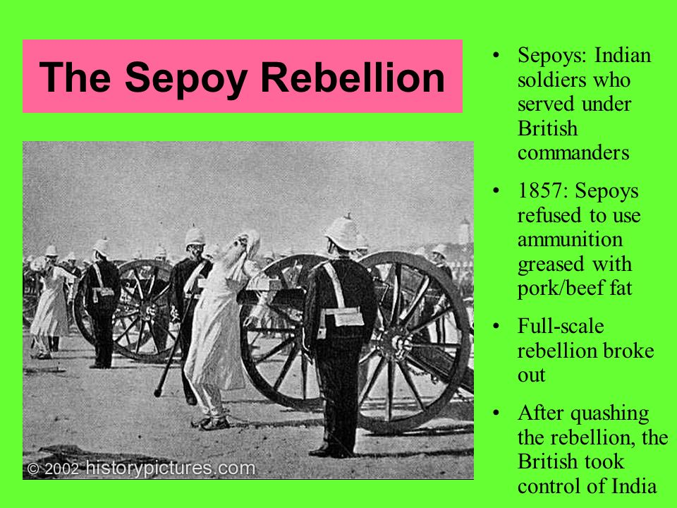 The Sepoy Rebellion Sepoys: Indian soldiers who served under British commanders. 1857: Sepoys refused to use ammunition greased with pork/beef fat.