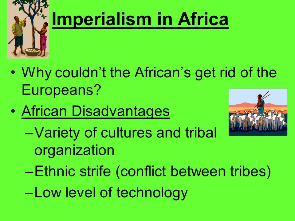 Imperialism in Africa Why couldn't the African's get rid of the Europeans African Disadvantages. Variety of cultures and tribal organization.