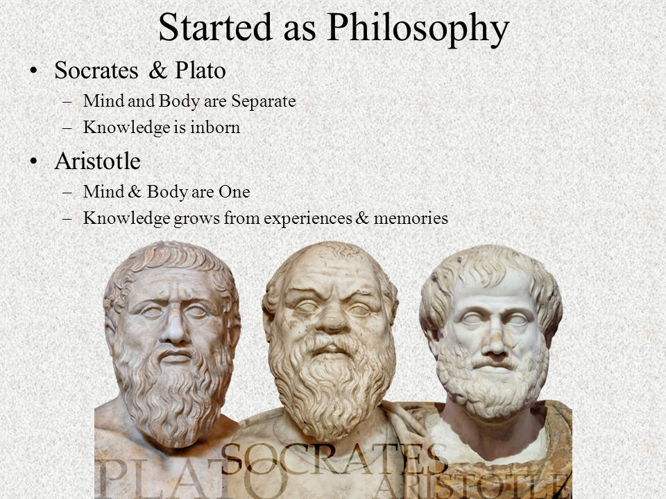 an analysis of the platos theory of knowledge Phaedrus study guide contains a biography of plato, quiz questions, major themes, characters, and a full summary and analysis.