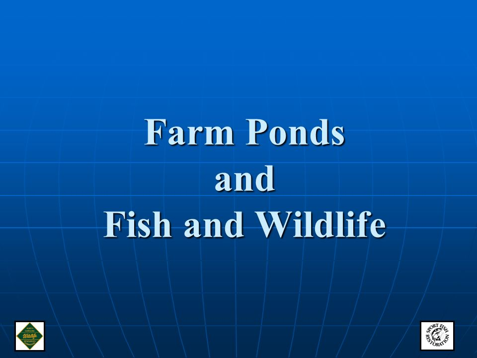 Farm ponds and fish and wildlife ppt video online download for Design of farm pond ppt