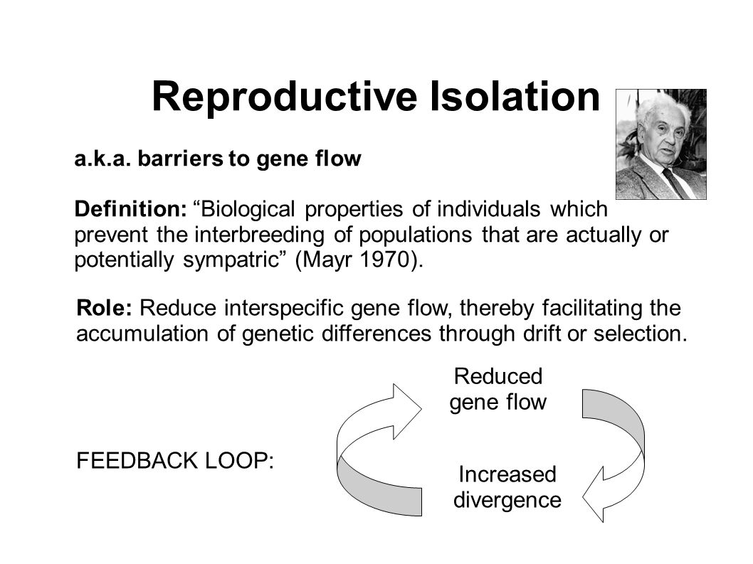 reproductive isolating mechanisms essay There are two main categories of reproductive isolation: prezygotic and postzygotic prezygotic isolation occurs before the formation of a zygote can take place.