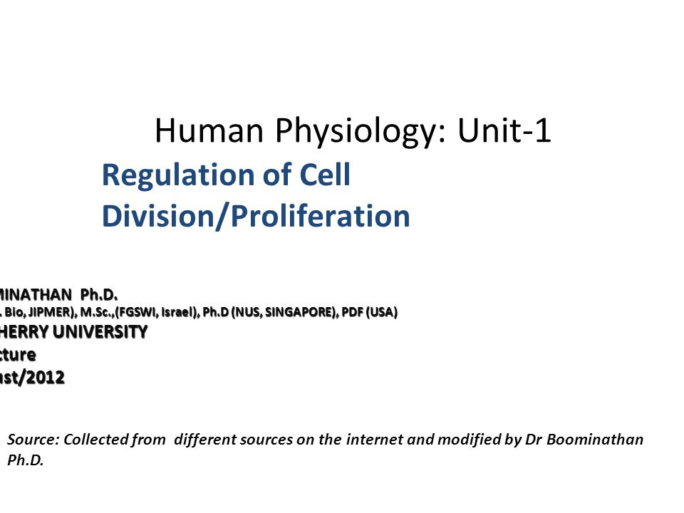 human physiology silverthorn pdf download