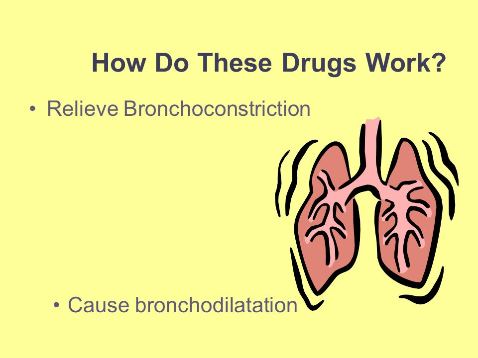 the action of ans related drugs on