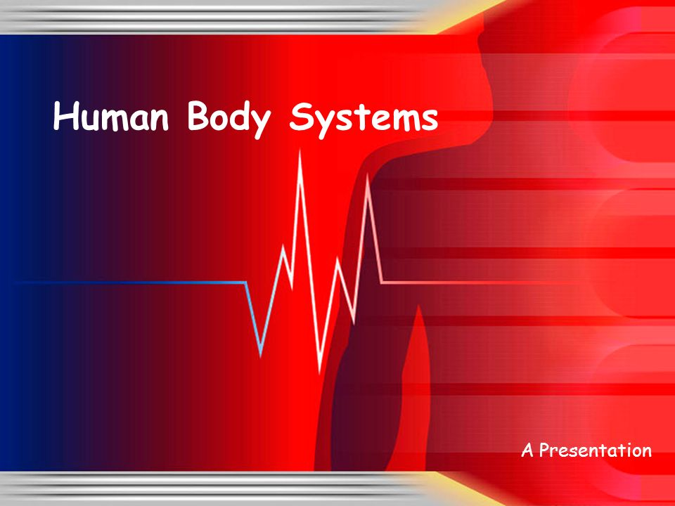 presentation body Most presentations are divided into three main parts: introduction, body and  conclusion presentations in english for esl learners.