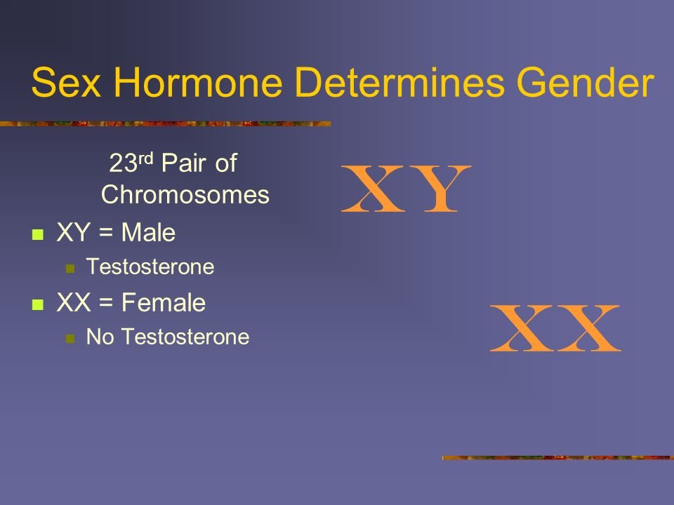 Sex Hormone Determines Gender