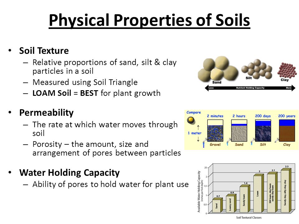 Geology chapter ppt video online download for Physical and chemical properties of soil wikipedia