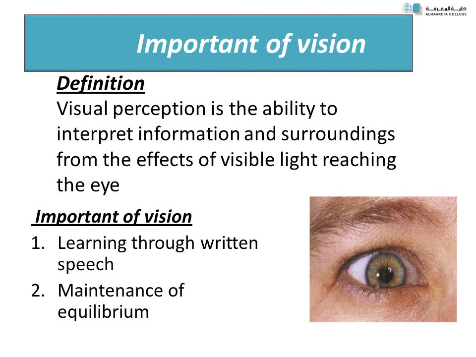 Discuss the importance of visual perception