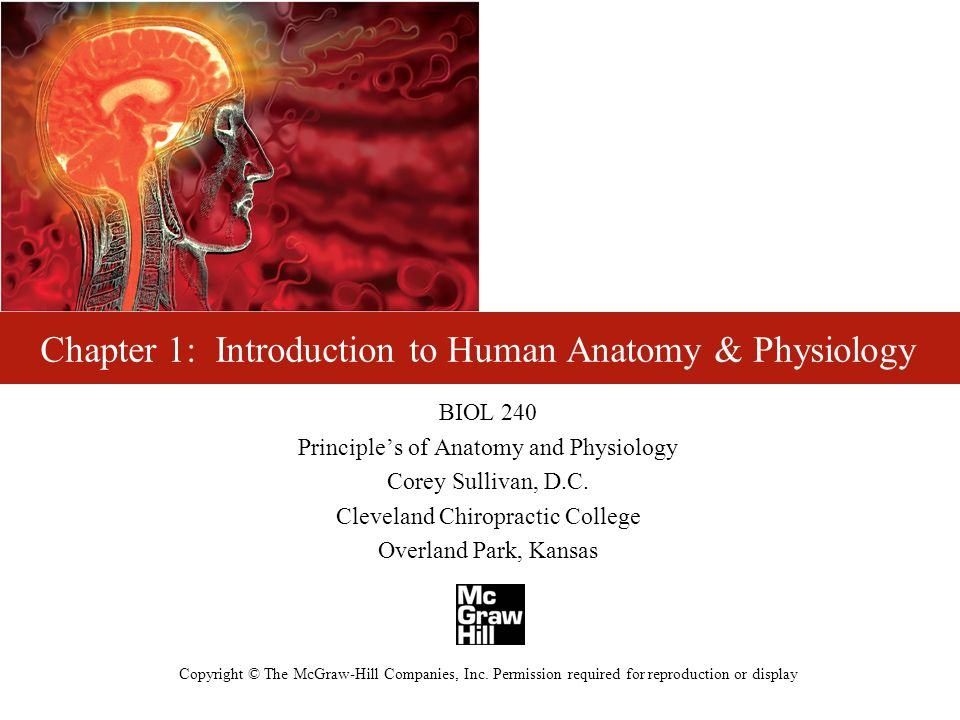 Excepcional Chapter 1 Study Guide Anatomy And Physiology Ideas ...