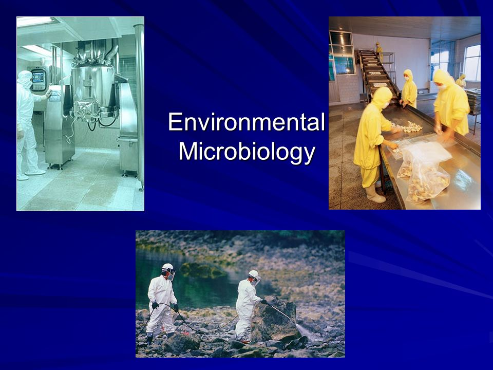 applied and environmental microbiology pdf