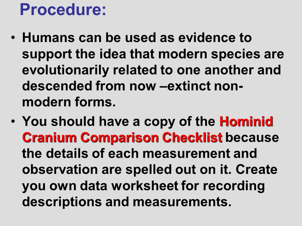 Human Evolution Worksheet The Best and Most Comprehensive Worksheets – Human Evolution Worksheet