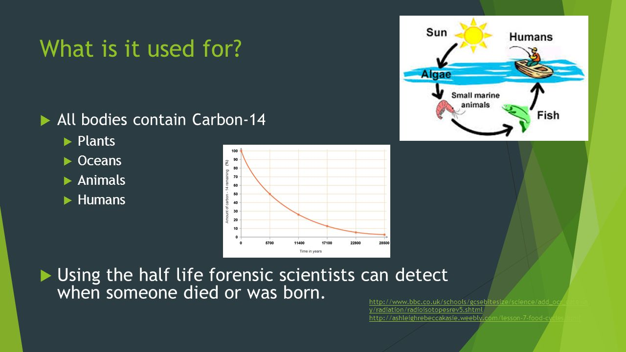 Facts about Carbon Dating 1 who developed carbon dating