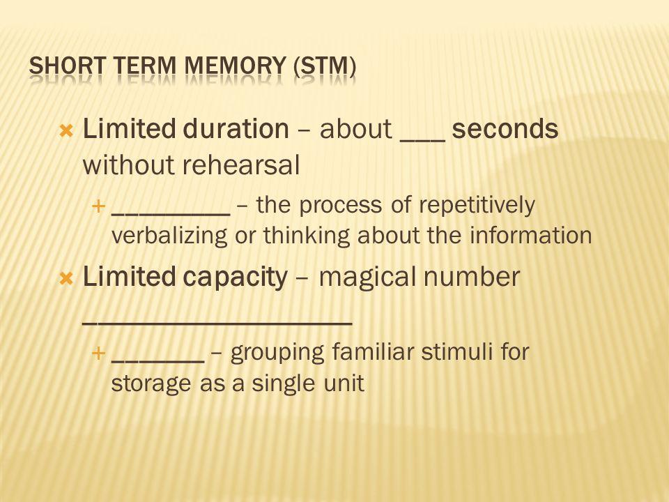 capacity of short term memory pdf