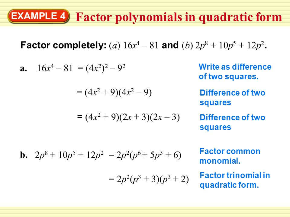 Quadratic In Form Polynomials Patrofiveloclubco. Quadratic In Form Polynomials. Worksheet. Factoring Trinomials Of The Form Ax2 Bx C Worksheet Answers At Clickcart.co