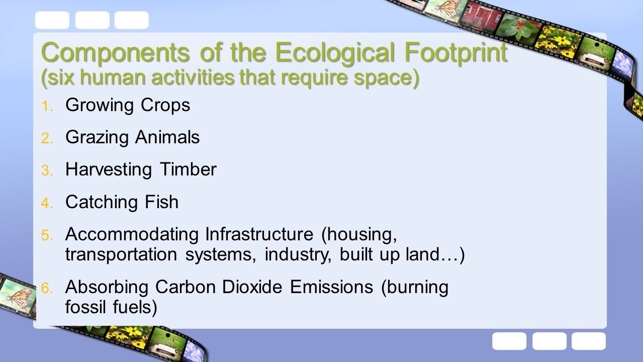 ess ecological footprint comparison The ecological footprint of a population is the area of land, in the same vicinity   the size of this area is compared wit the area available to the population, then.