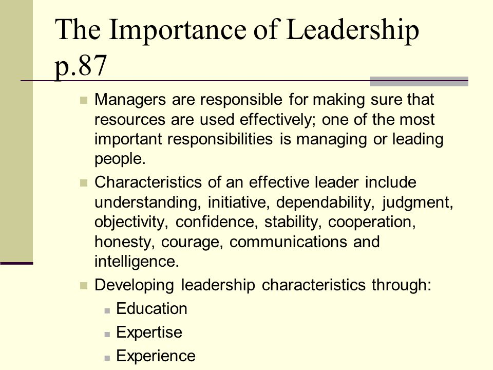 The Importance of Leadership p.87