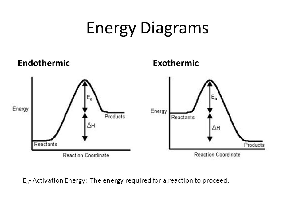 Endothermic And Exothermic Diagrams Wiring Diagrams ...
