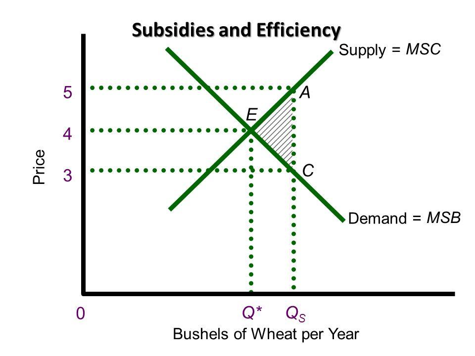 Subsidies and Efficiency