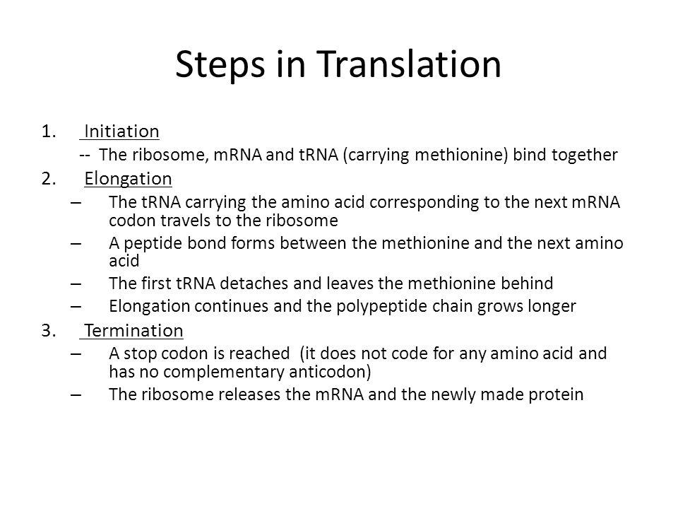 DNA, RNA and Protein Synthesis - ppt video online download