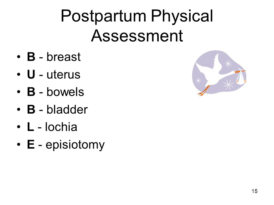 Postpartum Physical Assessment