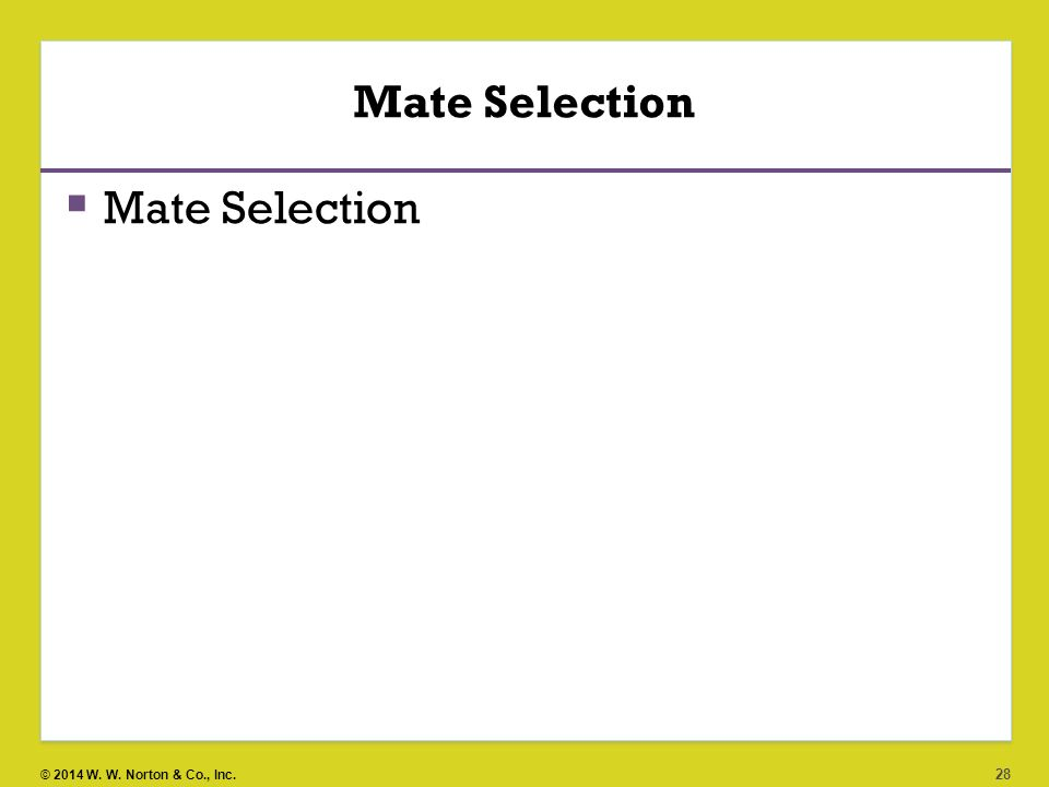 mate selection process in pakistan and Smith scholarworks theses, dissertations, and projects 2014 does internalized racism affect the mate selection process of african american men and women.
