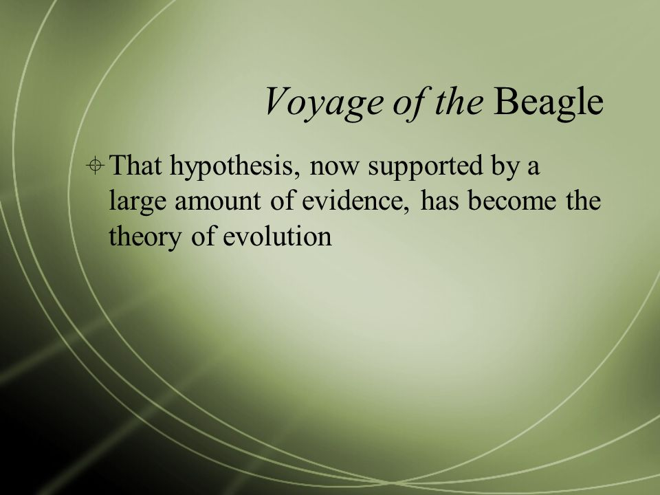 Voyage of the Beagle That hypothesis, now supported by a large amount of evidence, has become the theory of evolution.