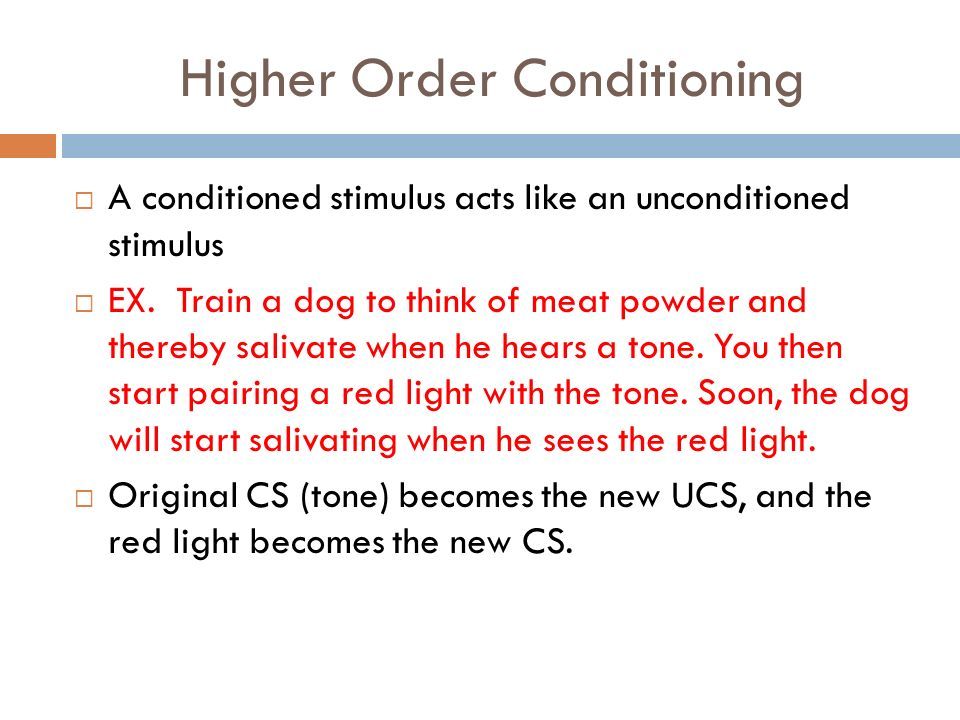 Learning: Classical Conditioning & Operant Conditioning