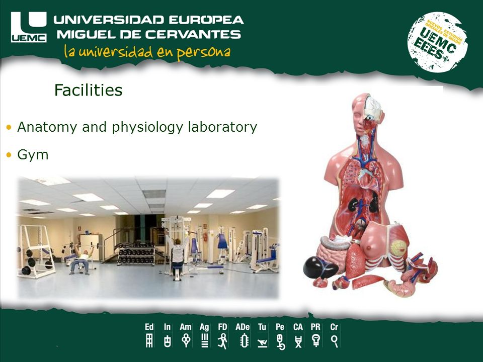 Facilities Anatomy and physiology laboratory Gym