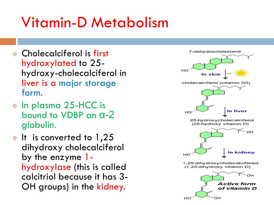 Professor of Biochemistry Lecture-Vit-D Metabolism - ppt video ...