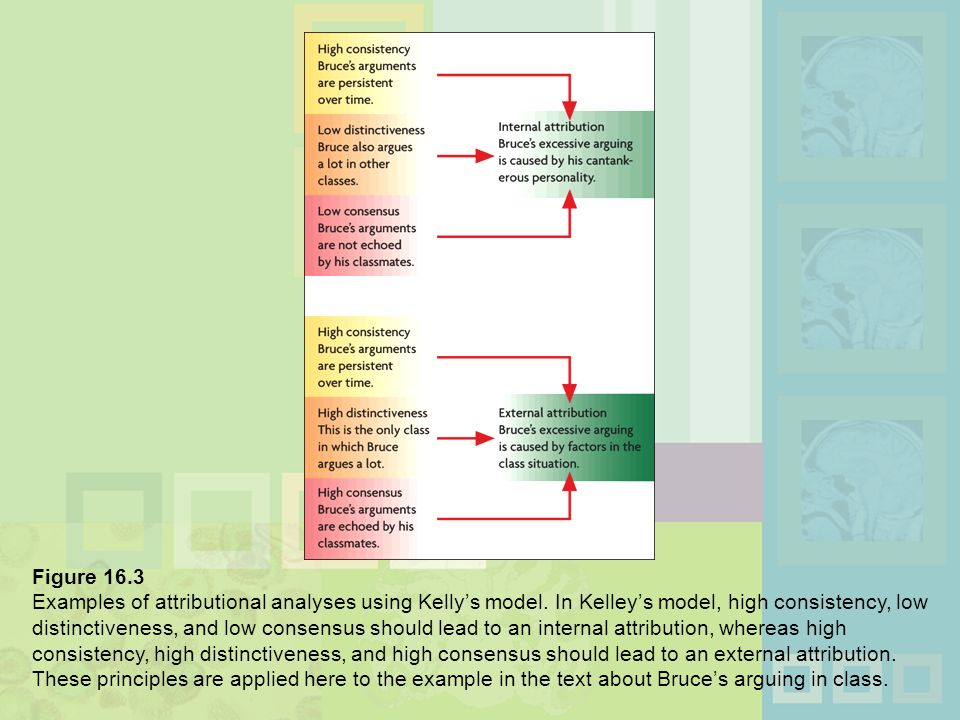 kelleys theory of causal attribution homework service