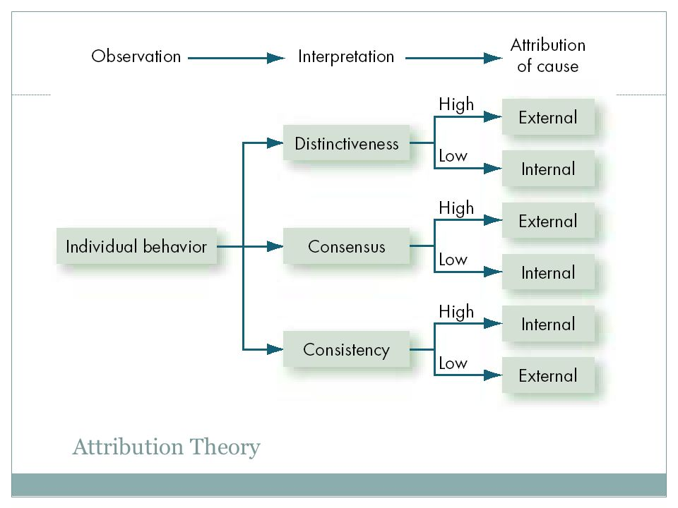 attribution theory Attribution is a cognitive process that entails linking an event to its causes attribution is one of a variety of cognitive inferences that are included within social cognition, which is one of several theoretical models within social psychology.