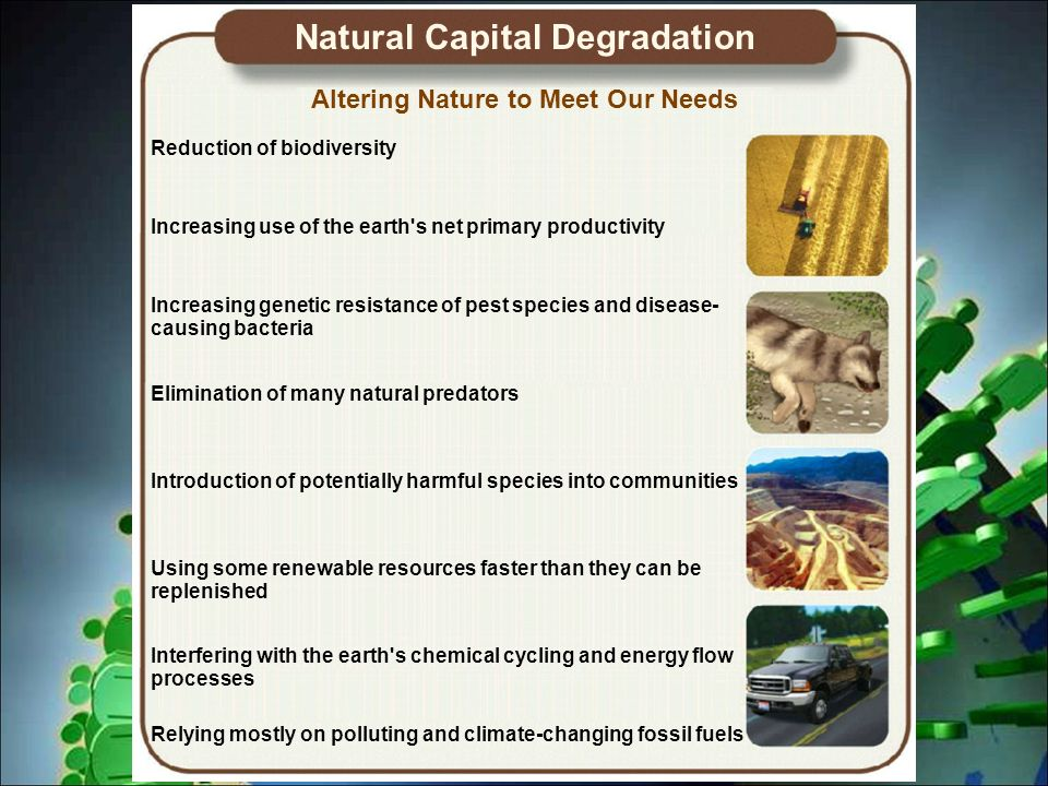 Introduction to Environmental Science - ppt video online download on