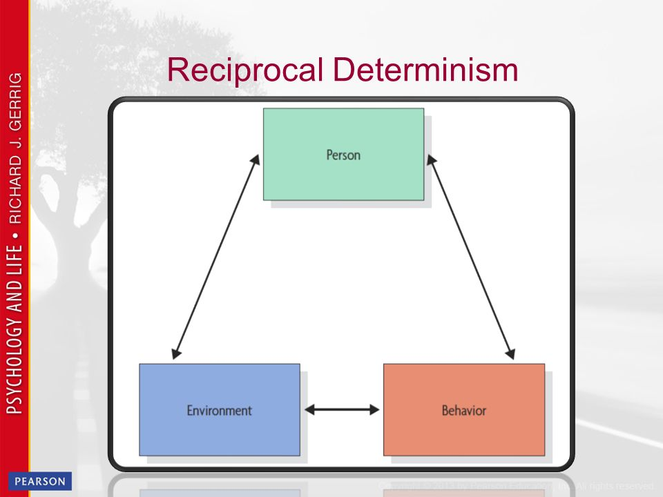 social determinism essay Some social scientists think cultural determinism goes even further and is engrained in how our government is structured and how we interact with one another.