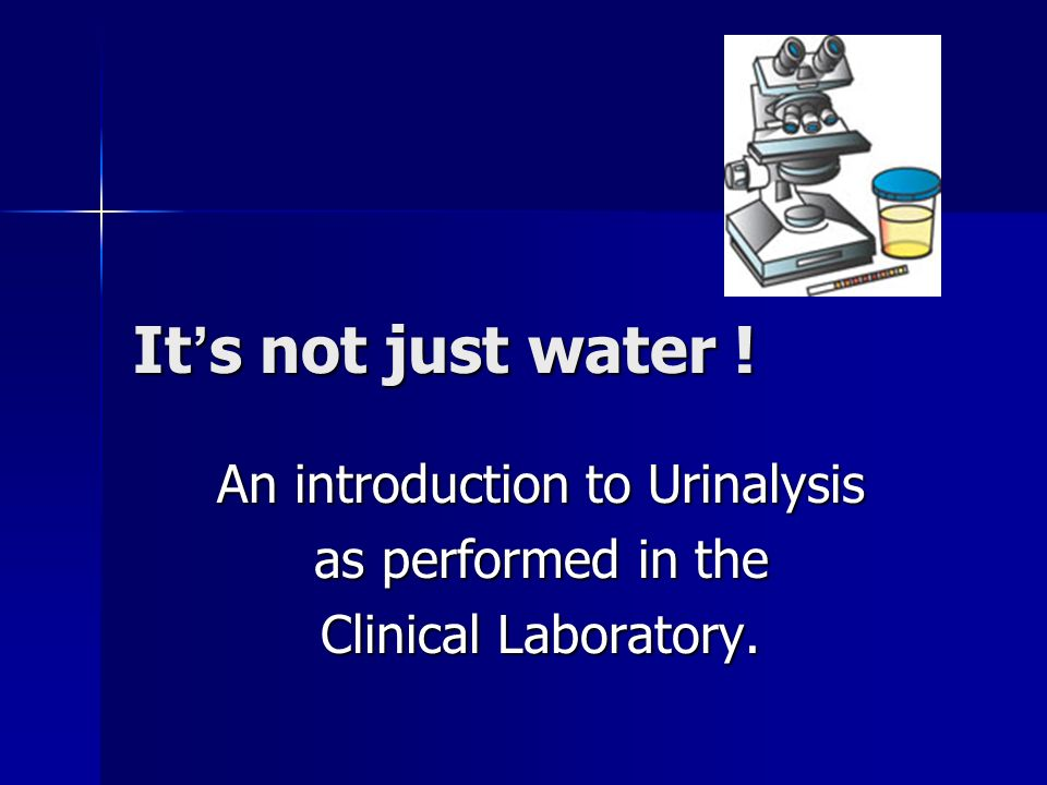 An introduction to Urinalysis as performed in the Clinical ...