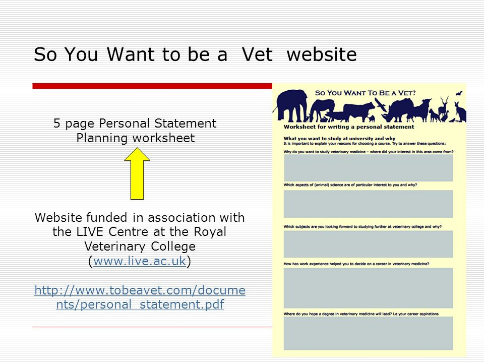 tips for writing personal statement for vet school