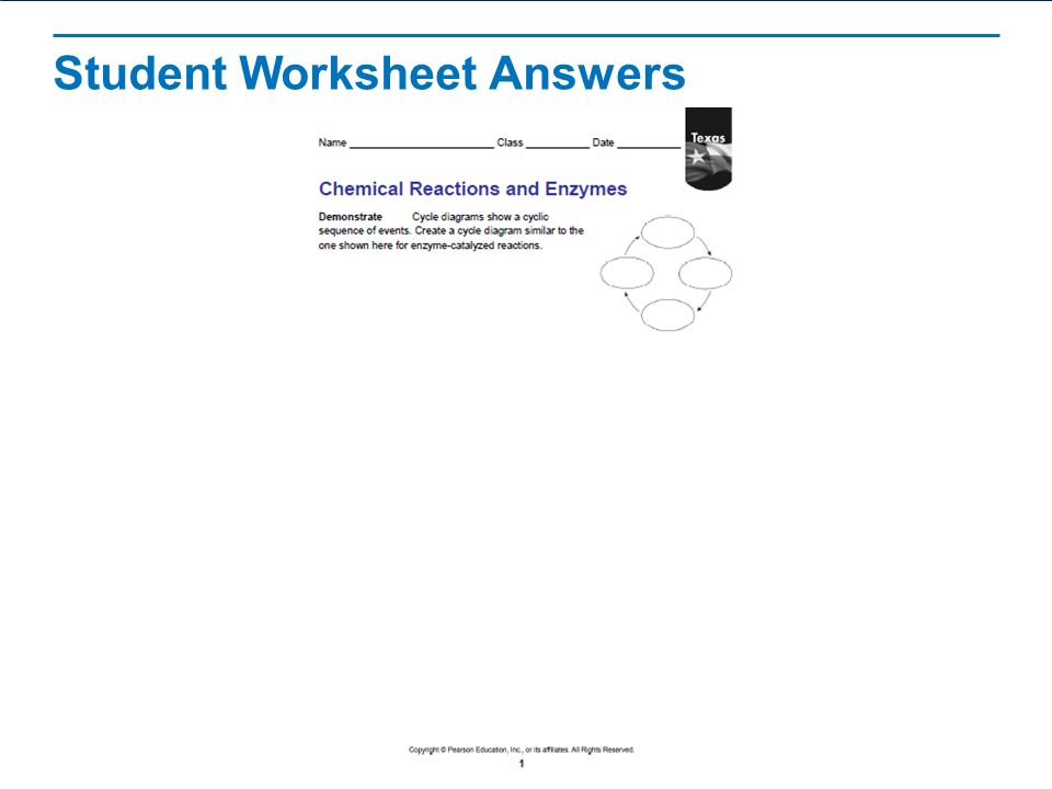 Chemical Reactions and Enzymes ppt video online download – Enzyme Worksheet