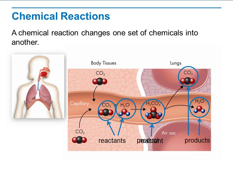a discussion of importance of toxic chemicals Why is environmental health important maintaining a  the health effects of  toxic substances and hazardous wastes are not yet fully understood research to .