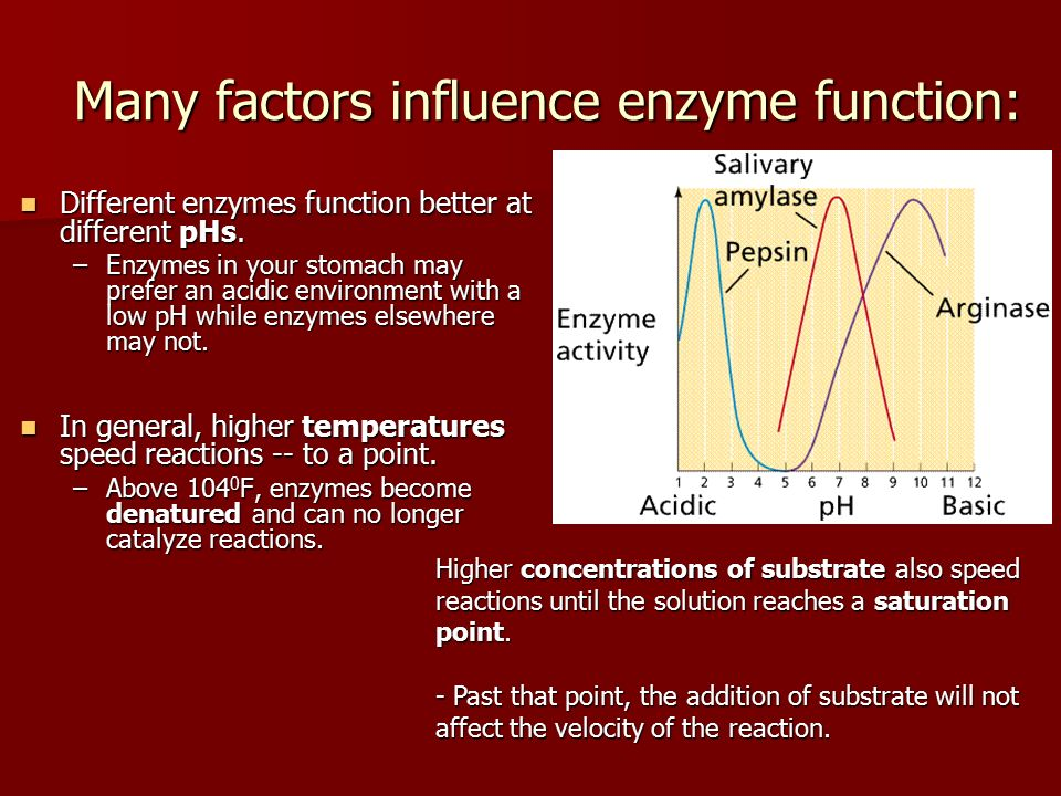 factors effecting enzymes Factors affecting enzyme activity the conditions of the reaction have a great impact on the activity of the enzymes enzymes are particular about the optimum conditions provided for the reactions such as temperature, ph, alteration in substrate concentration, etc.