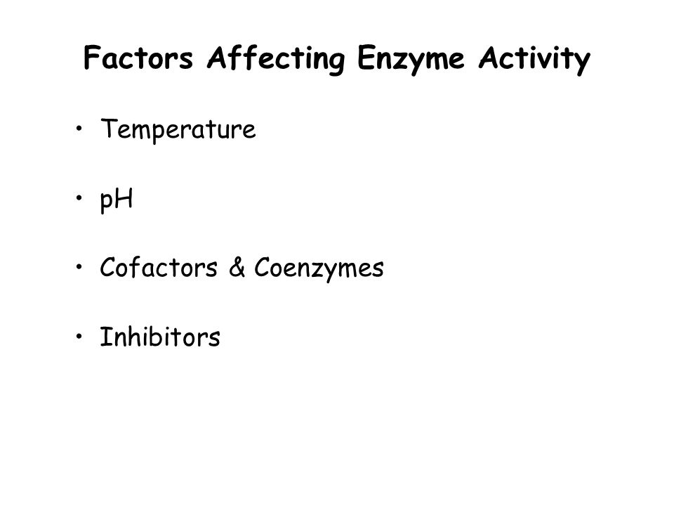what are enzymes  an enzyme is a catalyst in cellular