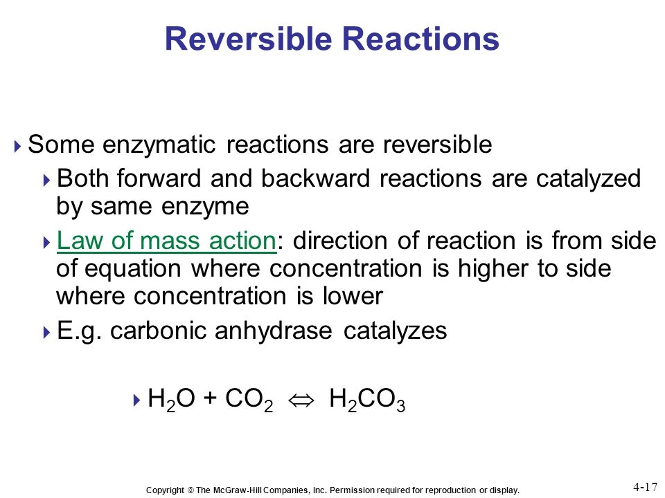 final exam acids and enzymatic reaction essay Get ready for the hiset science exam by watching our informative videos on chemical reactions the lessons in this chapter review topics in acids.