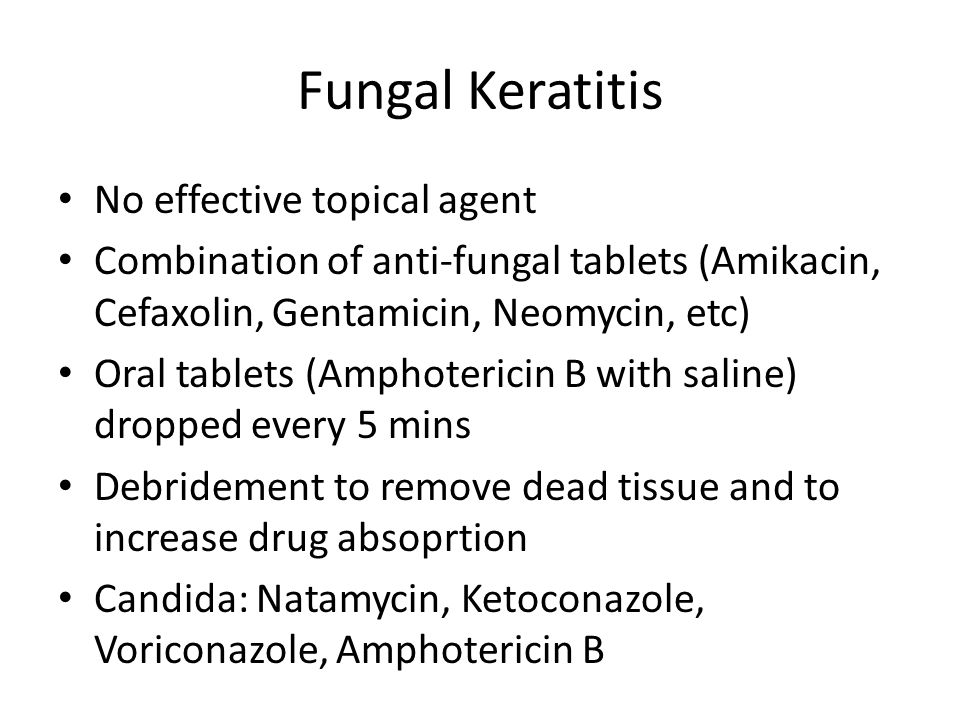 Diseases of the cornea ppt video online download for Amphotericin b tablets