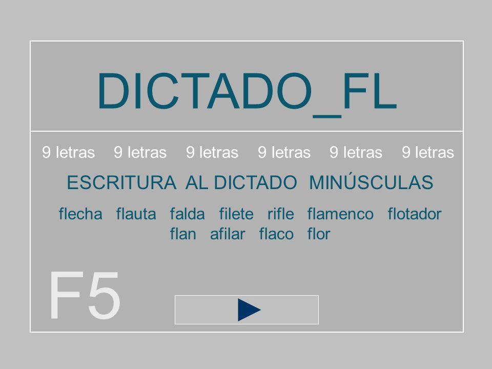 F5 DICTADO_FL ESCRITURA AL DICTADO MINÚSCULAS