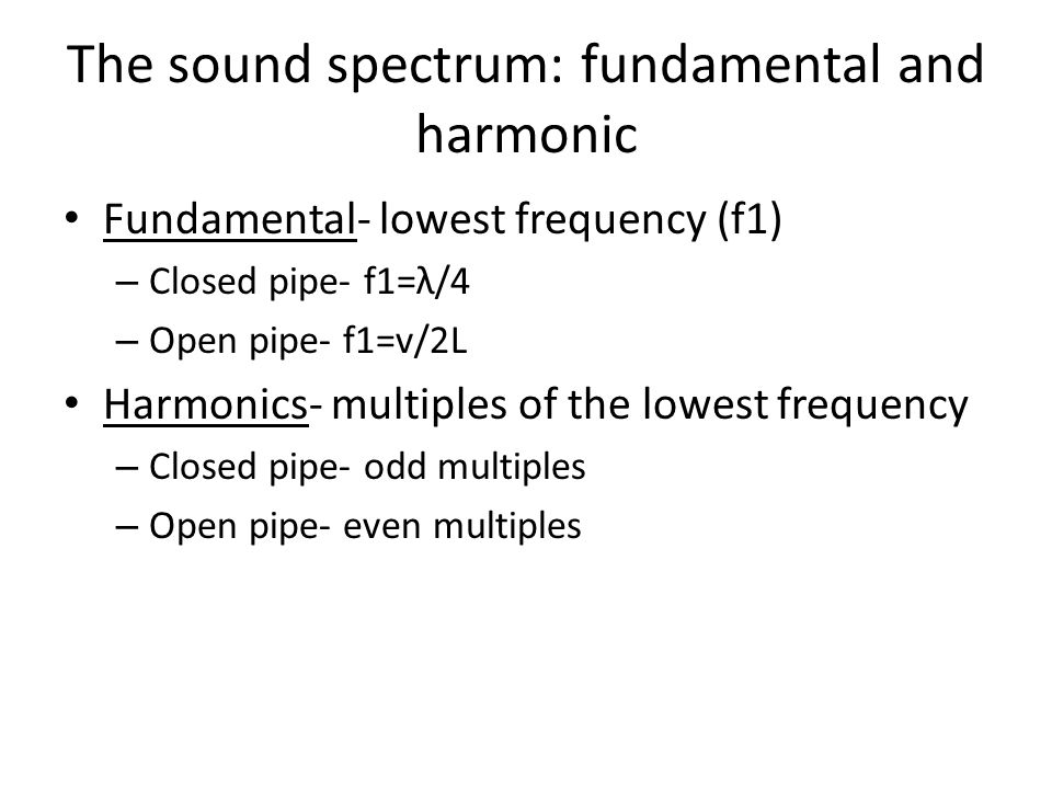 The sound spectrum: fundamental and harmonic