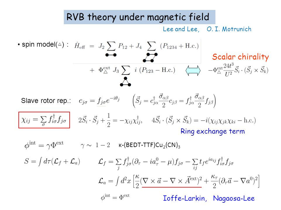 RVB theory under magnetic field